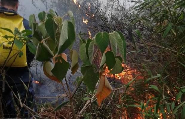 Combate ao incêndio na Serra dos Mascates