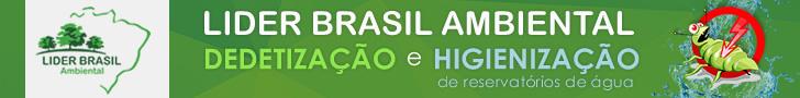 Lider Brasil Ambiental